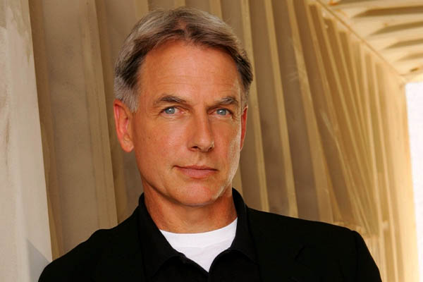 Image of Mark Harmon Net Worth