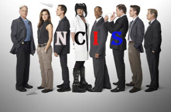 NCIS Net Worth