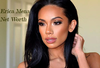 Image of Erica Mena Net Worth
